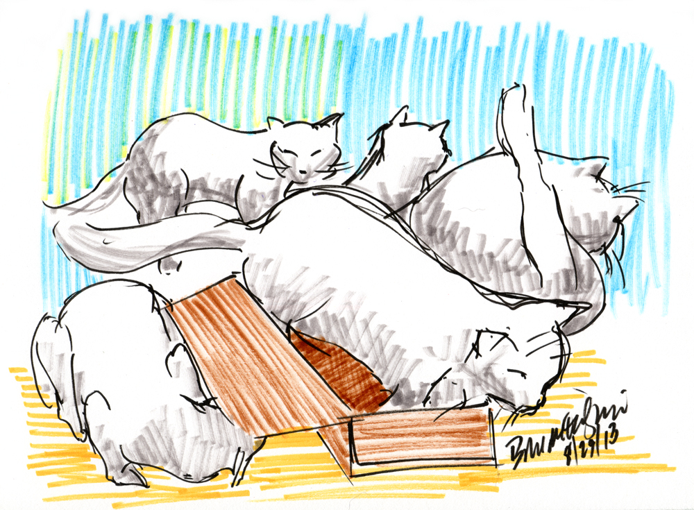 """Five Cats and One Box"", brush markers, 6.5"" x 9"" © Bernadette E. Kazmarski"