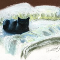 pastel sketch of black cat on bed