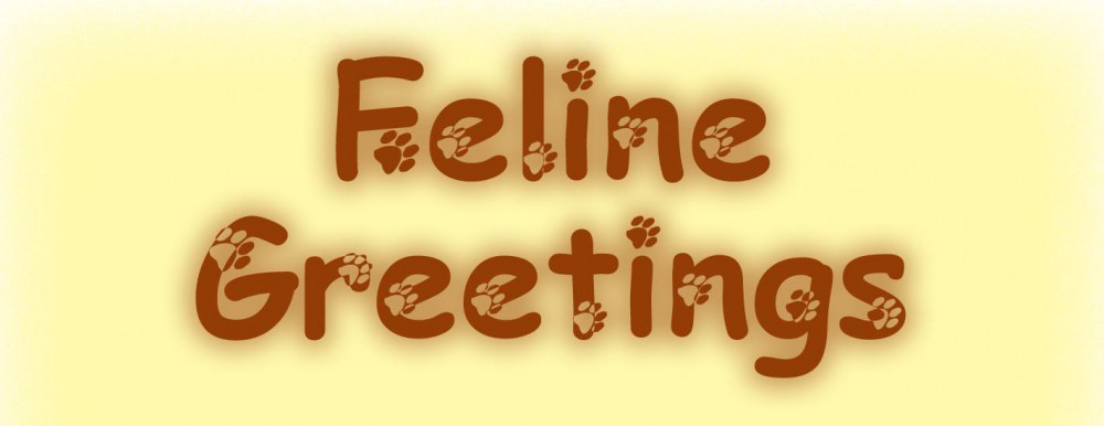 feline greetings art cards