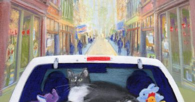 "Featured Artwork: Klepto Cat Book Cover No. 23, ""Cattywampus Travels"""