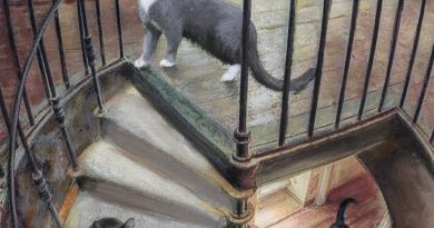 "Featured Artwork: Klepto Cat Book Cover No. 24, ""Cats in the Belfry"""
