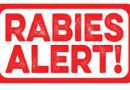 ACHD Issues Rabies Precautions for Residents of Marshall