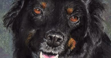 Commissioned Portrait: Annie, the World's Greatest Dog