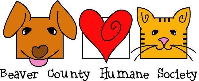 BCHS: February is National Spay and Neuter Month, February 23 is World Spay Day