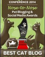 BEST-CAT-BLOG-n2n-FINALISTbadge
