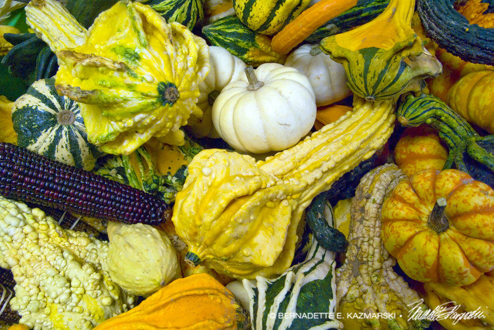 Gourds at the farm market stand.
