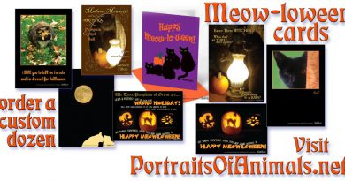 Marketplace: A Little Magic, A Little Shakespeare, Halloween Cards!