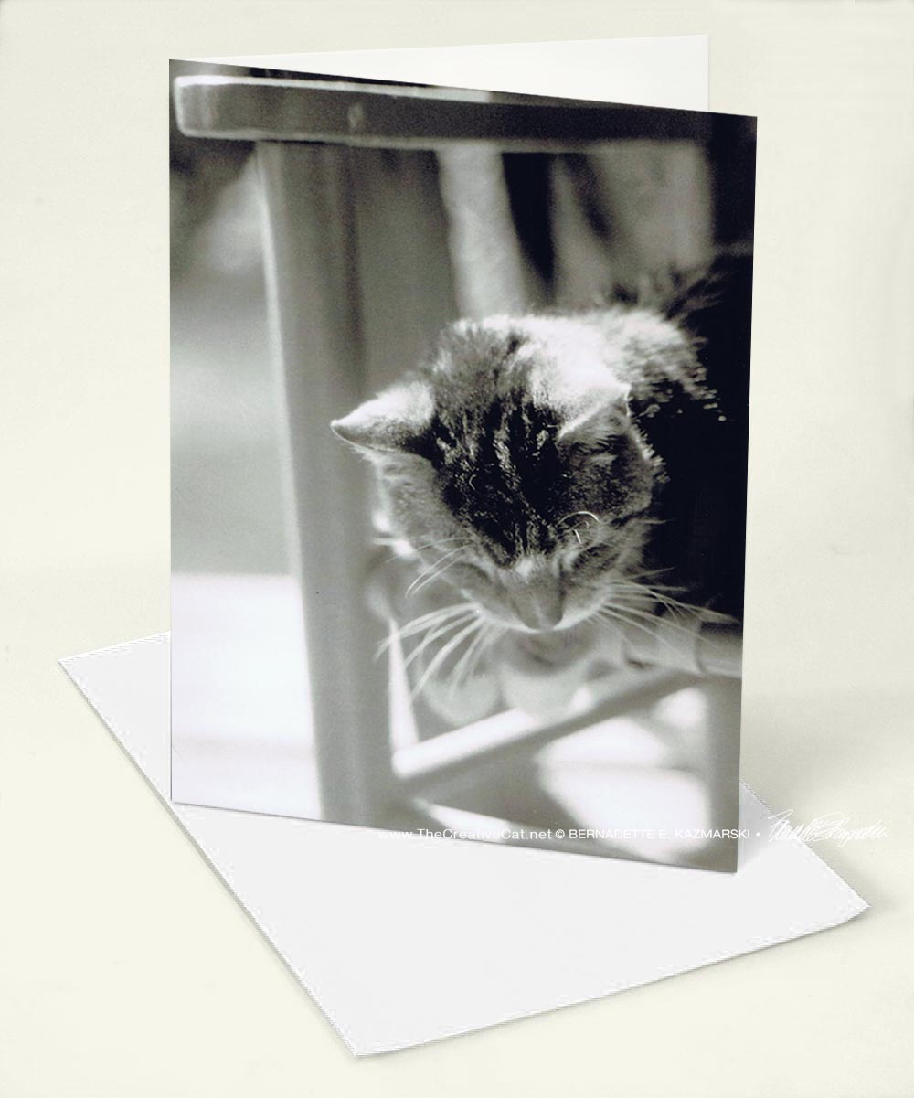 """A new greeting card design, """"My Old Man""""."""