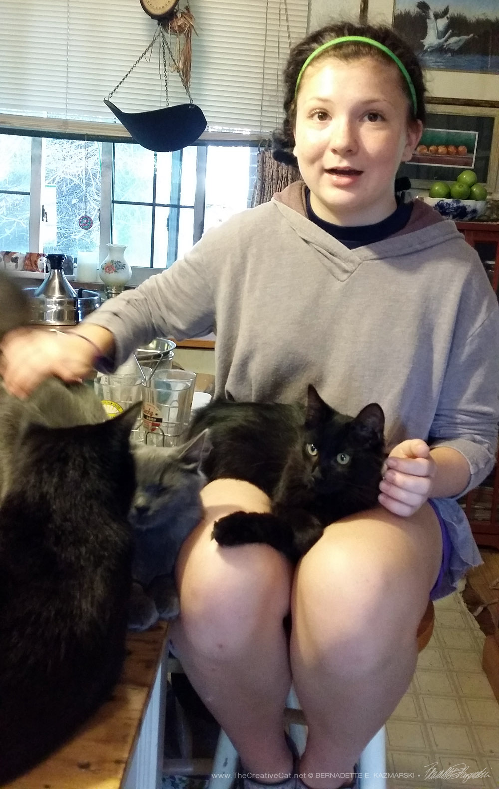 Cassidy has more cats to pet than she has hands.