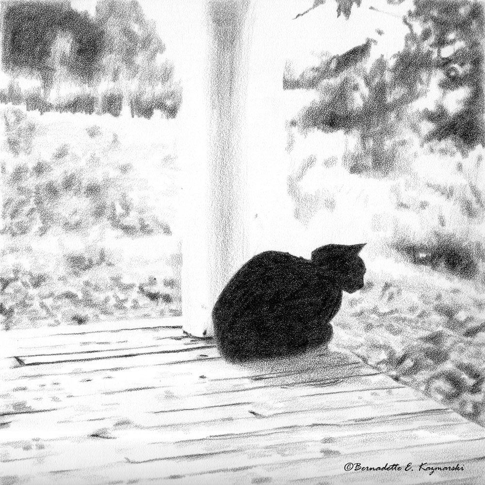 sketch of black cat on porch