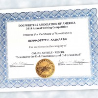 My Certificate of Excellence from DWAA.