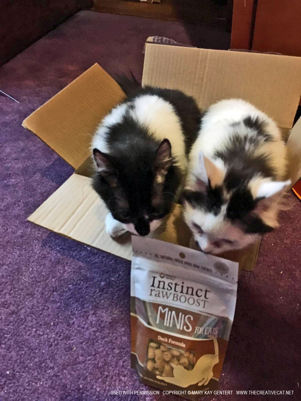 Nature S Variety Instinct Raw Boost Minis For Cats
