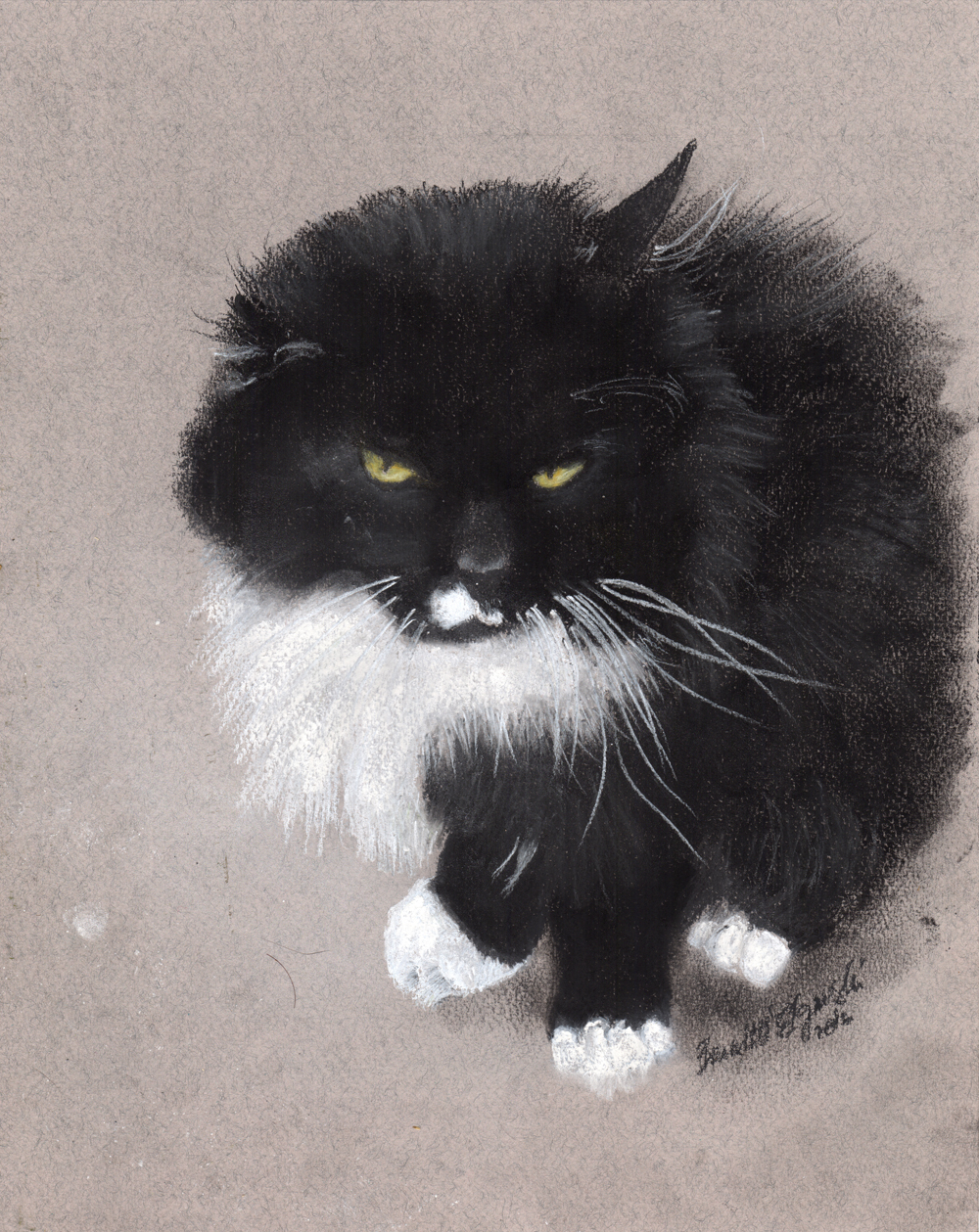 """Henry"", charcoal and pastel on Pastello paper, uncropped."