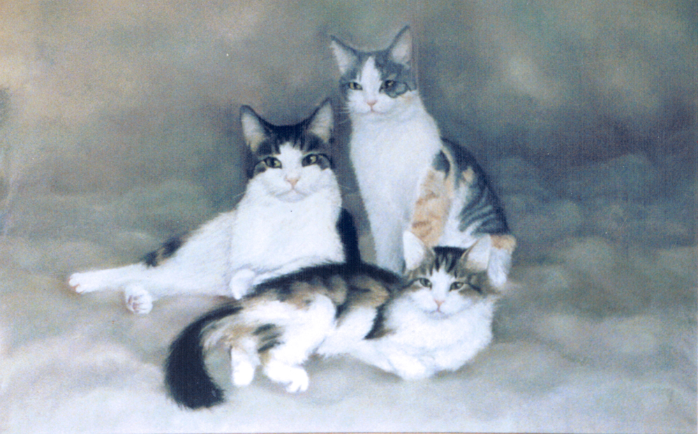 three tabby and white cats
