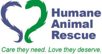 ARL & WPHS Merge to Form Humane Animal Rescue