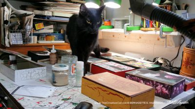 Mr. Sunshine does a quality control walk among the keepsakes, ensuring a supply of cat hair.