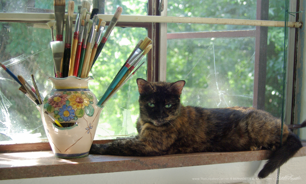 Kelly the Studio Cat, on the windowsill.