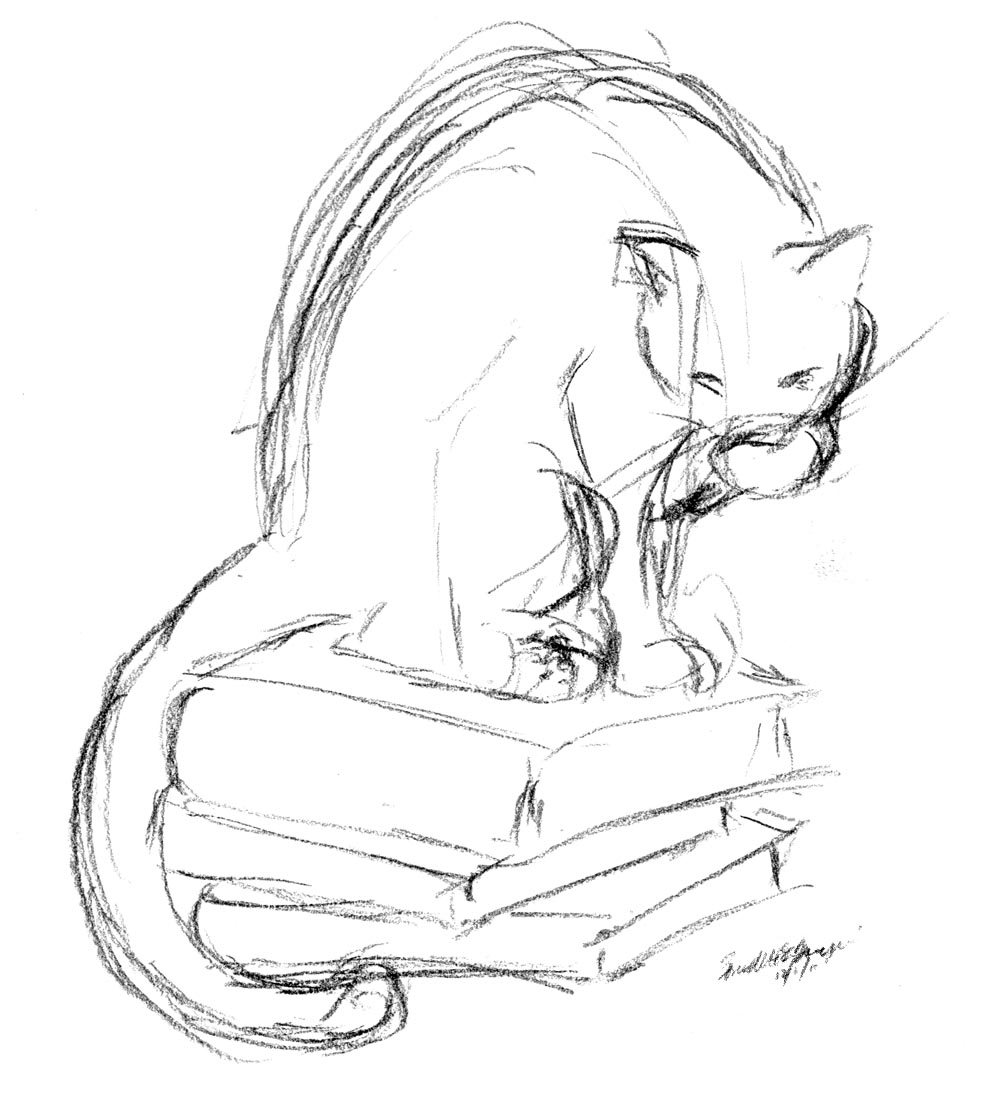 pencil sketch of cat on pile of books