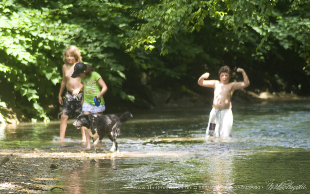 My great niece and nephews with Bingo splashing through Robinson Run.