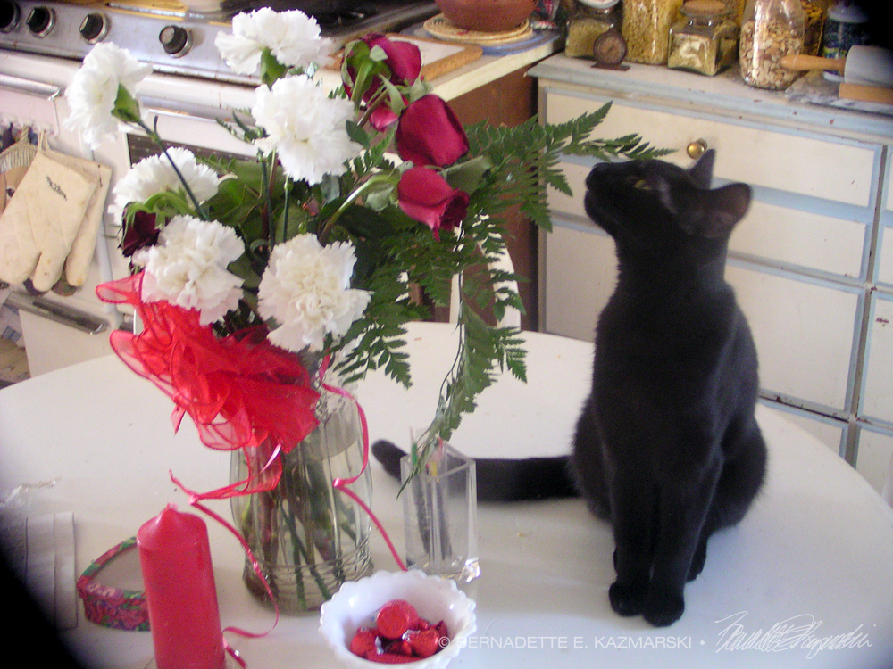 Flowers for Your Valentine ~ The Creative Cat