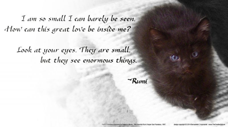 "Rumi, ""This Great Love"""