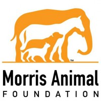 Morris Animal Foundation Logo