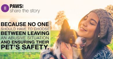Bayer launches PAWS: Pet and Women Safety from Domestic Abuse