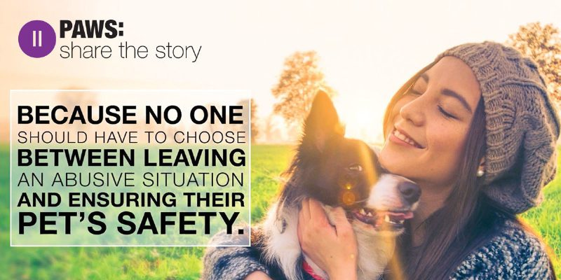 PAWS: Share the Story (PRNewsFoto/Bayer)