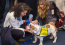 Press Release: Pet Night on Capitol Hill Delivers the Message: Pets are Important to Our Health