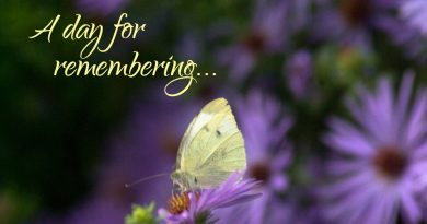 "CCPC Pet Memorial Sunday Ceremony ""A Day For Remembering"""