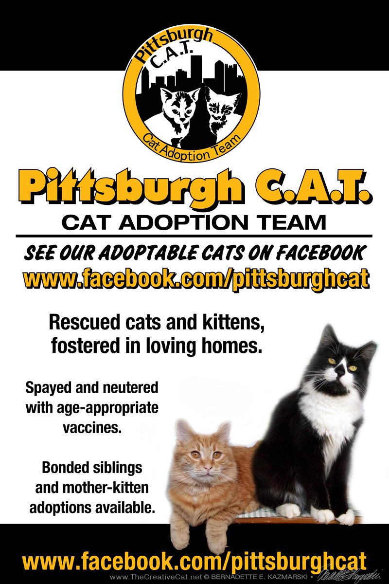 Pittsburgh CAT sign.