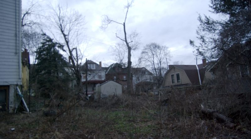 Post-apocalyptic backyard