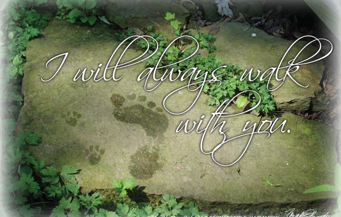 I Will Always Walk With You