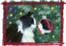 Pet Loss and Grief During the Holiday Season