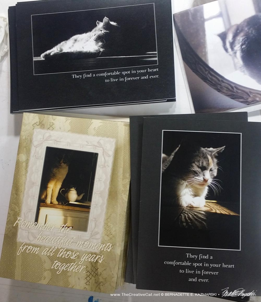 Always popular, three of the original designs, Moses and Peaches. new animal sympathy cards