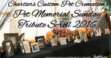 Chartiers Custom Pet Cremation 2016 Tribute Scroll