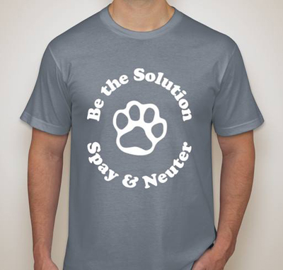 Support the Homeless Cat Management Team!