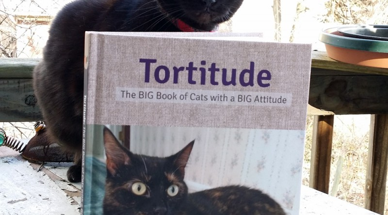 Mimi approves this book.