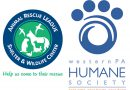 Animal Rescue League And Western PA Humane Society To Merge